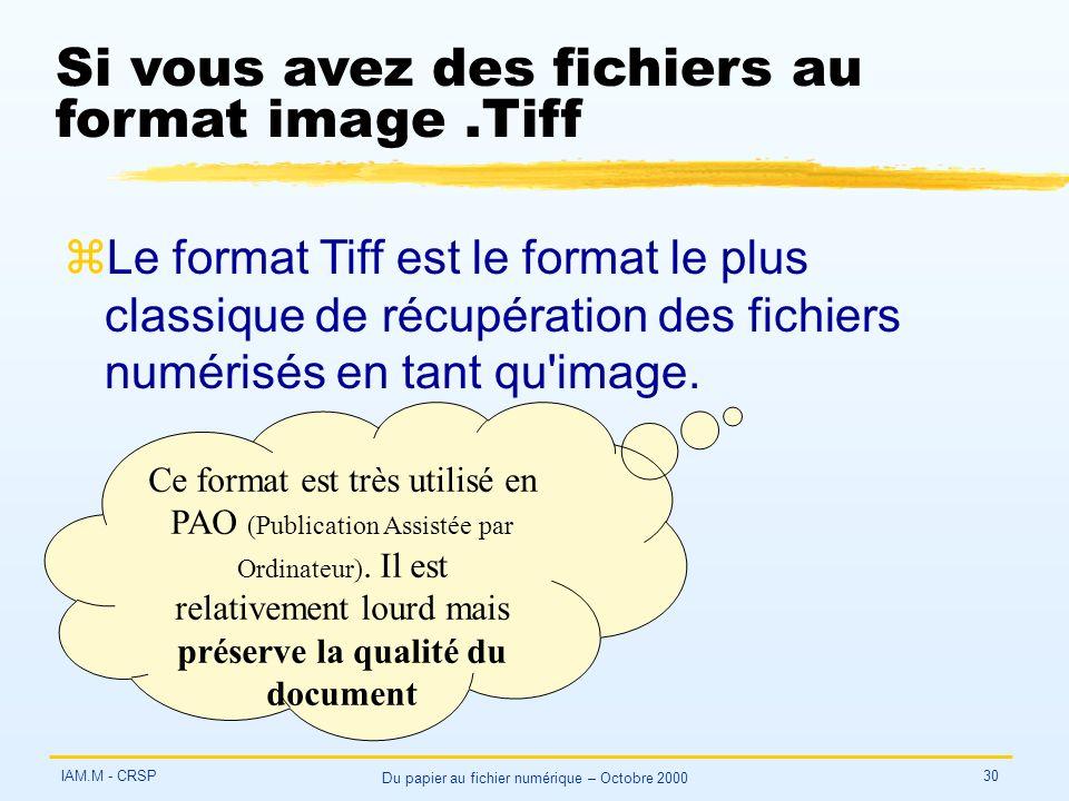 IAM.M - CRSP Du papier au fichier numérique – Octobre 2000 30 Si vous avez des fichiers au format image.Tiff zLe format Tiff est le format le plus classique de récupération des fichiers numérisés en tant qu image.