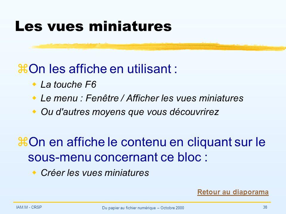 IAM.M - CRSP Du papier au fichier numérique – Octobre 2000 38 Les vues miniatures zOn les affiche en utilisant : wLa touche F6 wLe menu : Fenêtre / Af