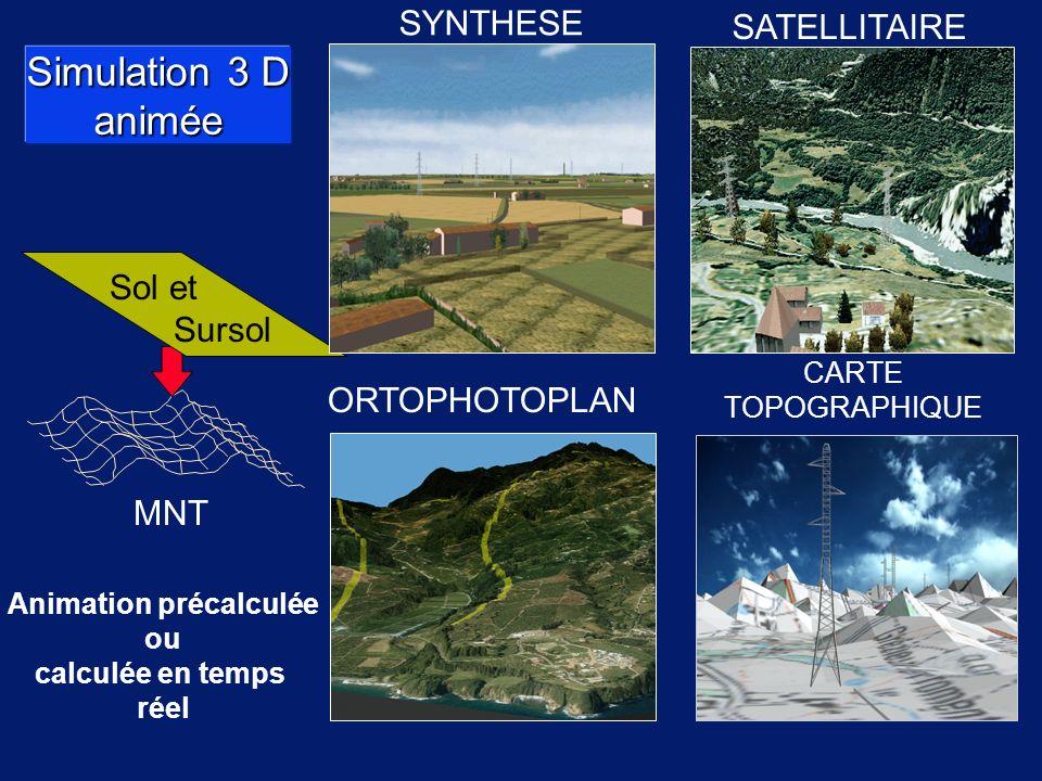 Simulation 3 D animée SYNTHESE CARTE TOPOGRAPHIQUE ORTOPHOTOPLAN MNT Sol et Sursol SATELLITAIRE Animation précalculée ou calculée en temps réel