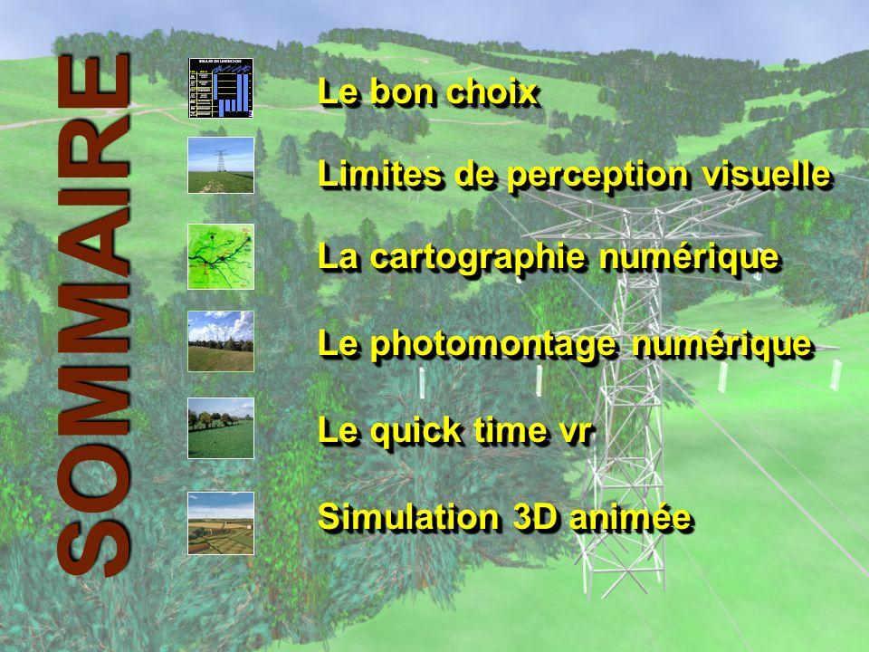 SIMULATION / LE BON CHOIX AIRE D ETUDE ETUDE ETAT INITIAL RECHERCHE FUSEAU PERMIS DE CONSTRUIRE Carte de visibilité Photomontage QUICK TIME VR Simulation 3 D OBJECTIF PHASE Synthése temps réel ETUDE VISIBILITE GLOBALE CHOIX FUSEAU ETUDE D IMPACT TRACE DETAIL ETUDE VISIBILITE GLOBALE MESURE DE LIMPACT DE L OUVRAGE ETUDE VISIBILITE LOCALE ET SPECIFIQUE COMPARER LES FUSEAUX VISUALISER L OUVRAGE COMPARER LES VARIANTES REPRESENTER L OUVRAGE TEL QU IL SERA CONSTRUIT REPRESENTER L OUVRAGE TEL QU IL SERA CONSTRUIT