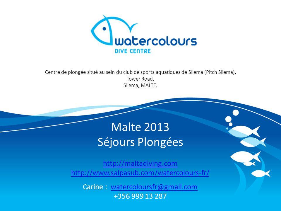 Malte 2013 Séjours Plongées http://maltadiving.com http://www.salpasub.com/watercolours-fr/ Carine : watercoloursfr@gmail.comwatercoloursfr@gmail.com