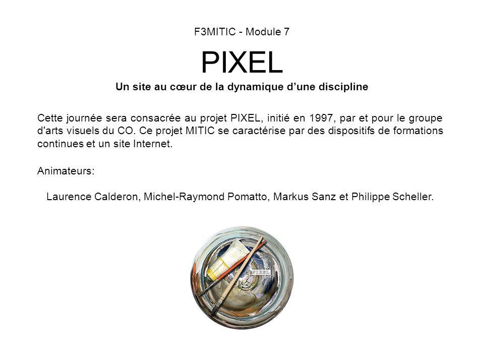 F3MITIC - Module 7 PIXEL Un site au cœur de la dynamique dune discipline Cette journée sera consacrée au projet PIXEL, initié en 1997, par et pour le groupe d arts visuels du CO.