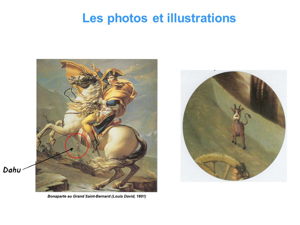 Les photos et illustrations