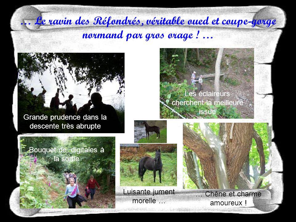 … Chaque sentier nous réserve une surprise : maison traditionnelle, bovins, chevaux … Le château de Launay émerge de la verdure … un petit arrêt et Louis rythme le pas vers … .