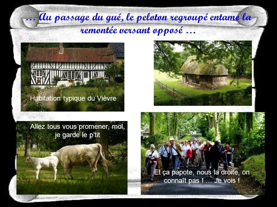 … En traversant le hameau des Coudraies, les hauts talus bocagers du Vièvre invitent à la découverte … Cest où quon va .