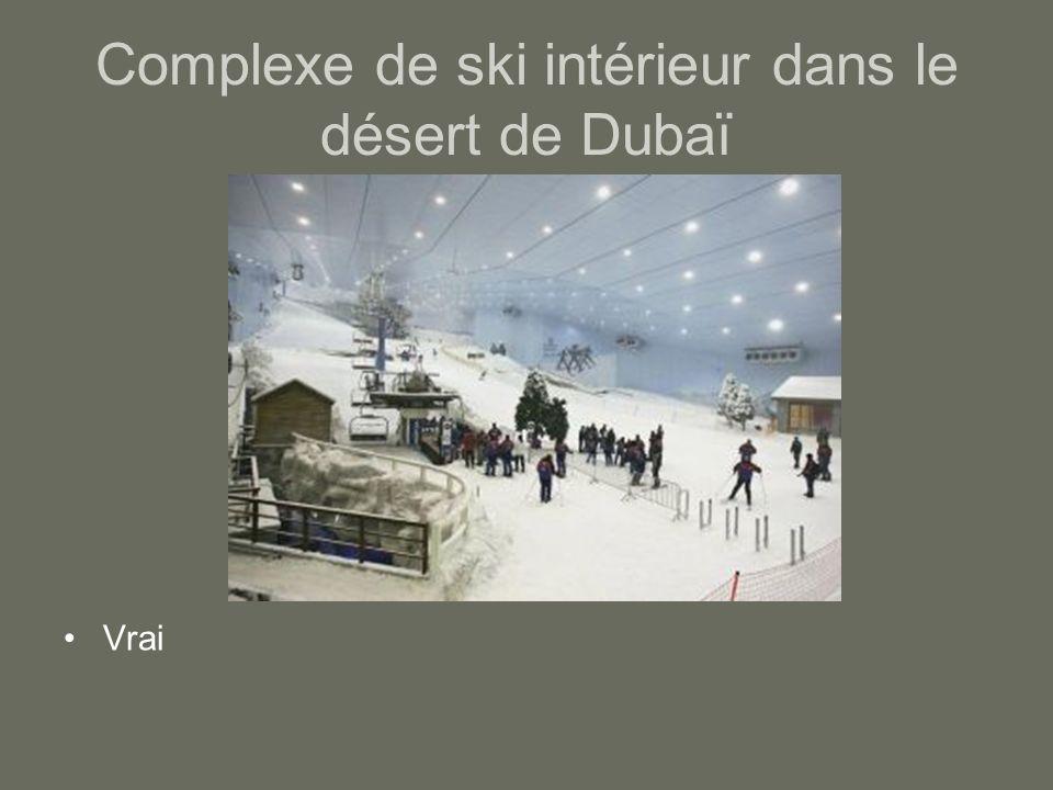 Complexe de ski intérieur dans le désert de Dubaï Vrai