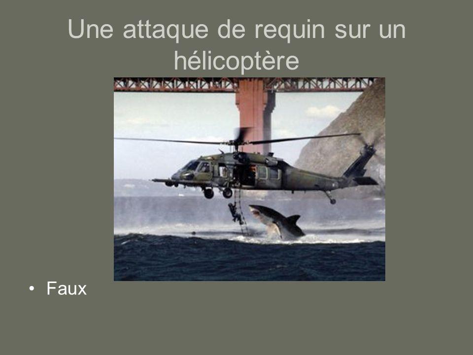 Une attaque de requin sur un hélicoptère Faux
