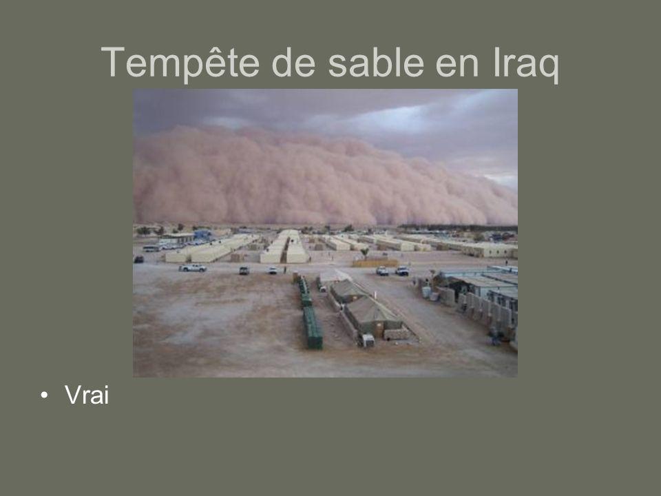 Tempête de sable en Iraq Vrai