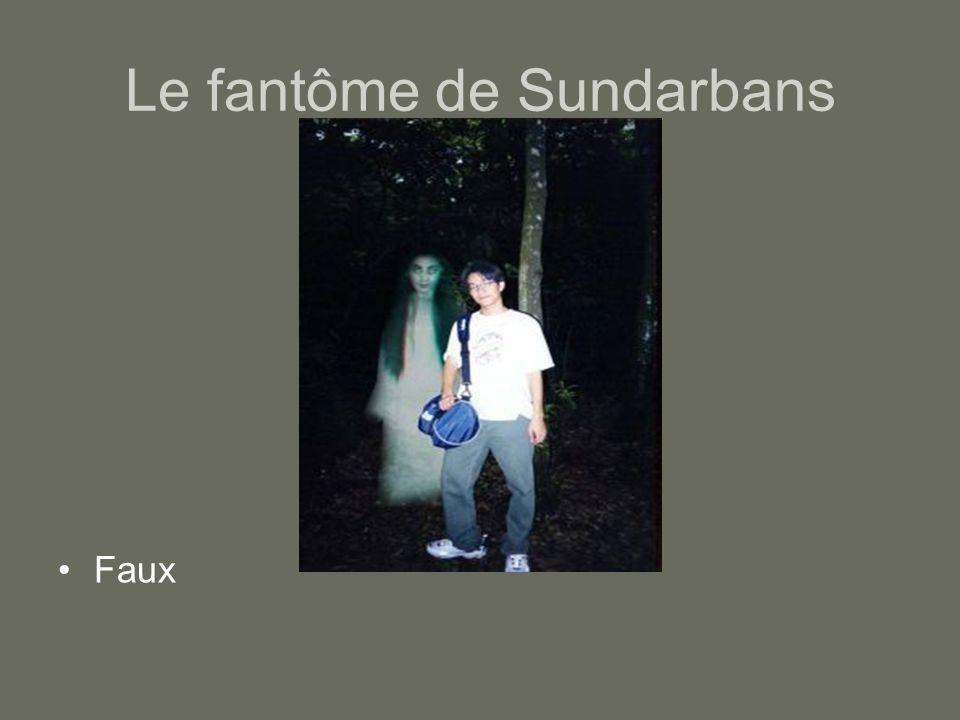 Le fantôme de Sundarbans Faux