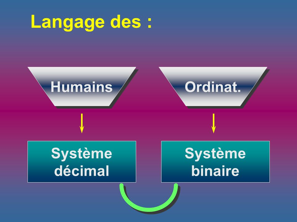 Langage des : Humains Système décimal Ordinat.