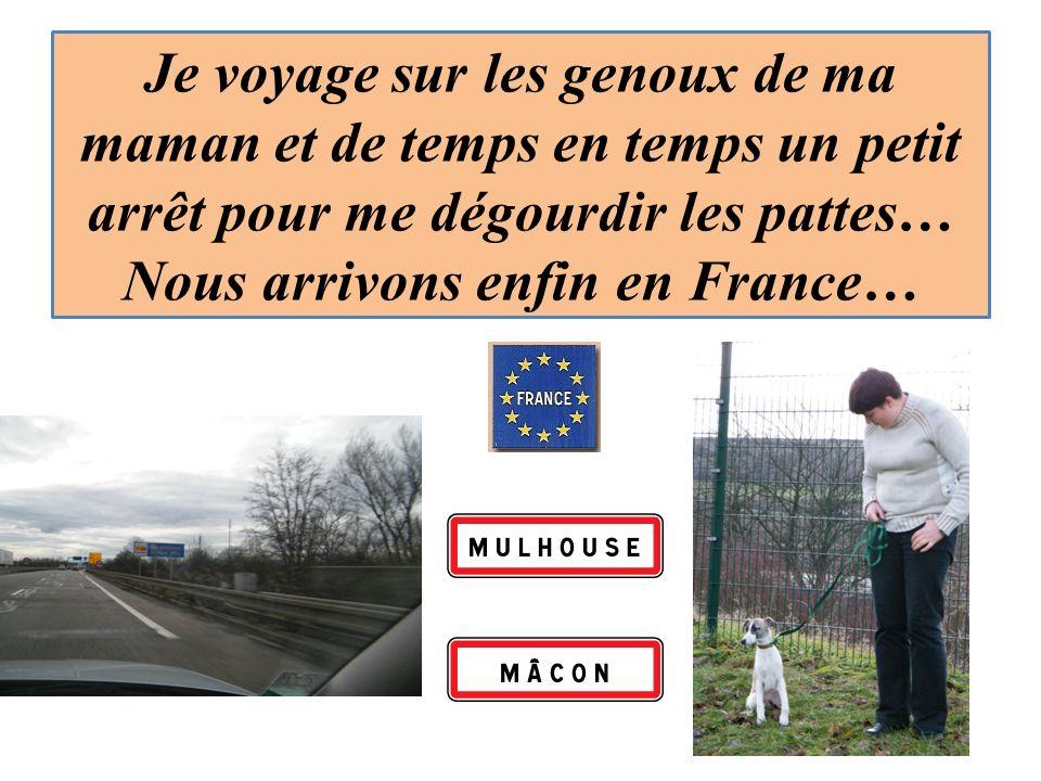Je voyage sur les genoux de ma maman et de temps en temps un petit arrêt pour me dégourdir les pattes… Nous arrivons enfin en France…