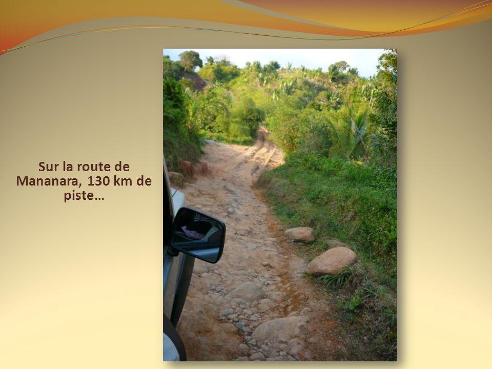 Sur la route de Mananara, 130 km de piste…
