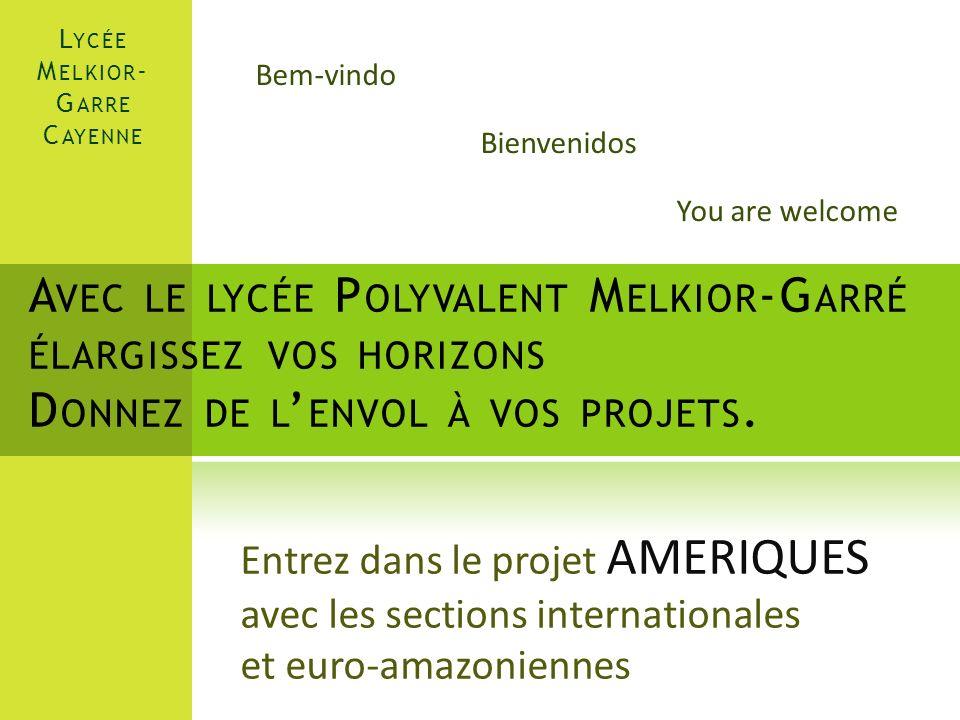 L E P ROJET Le Lycée Melkior-Garré souhaite mettre laccent sur lInternational, le perfectionnement des langues vivantes, louverture culturelle vers nos pays voisins.