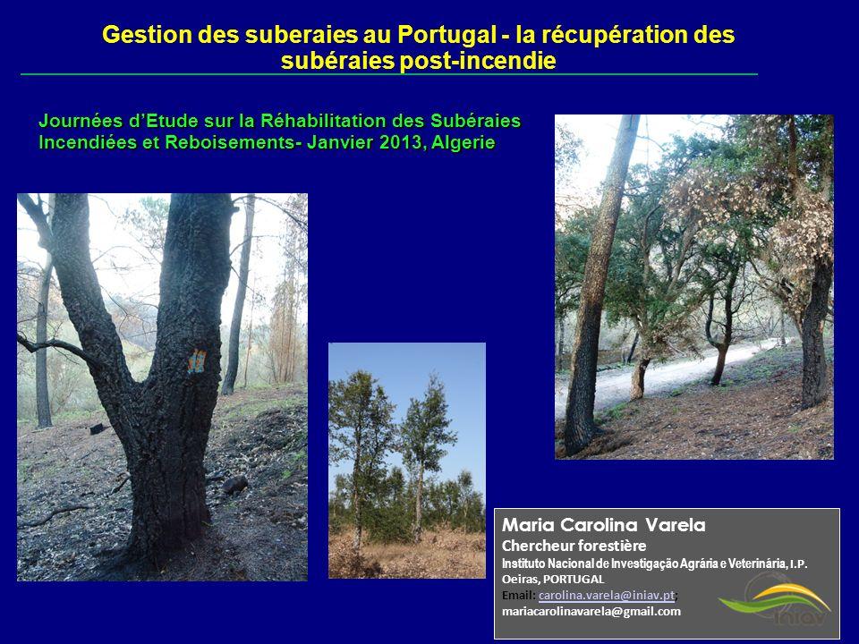Maria Carolina Varela Chercheur forestière Instituto Nacional de Investigação Agrária e Veterinária, I.P. Oeiras, PORTUGAL Email: carolina.varela@inia