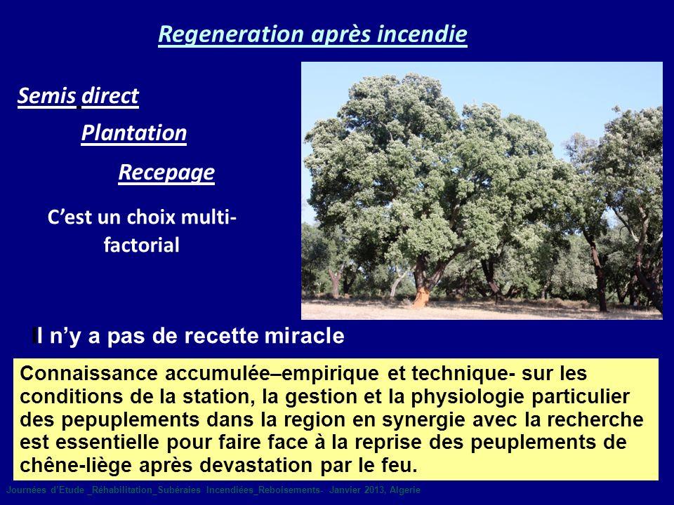 Plantation Semis direct Regeneration après incendie Cest un choix multi- factorial Il ny a pas de recette miracle Connaissance accumulée–empirique et
