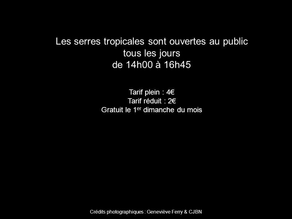 Crédits photographiques : Geneviève Ferry & CJBN Les serres tropicales sont ouvertes au public tous les jours de 14h00 à 16h45 Tarif plein : 4 Tarif réduit : 2 Gratuit le 1 er dimanche du mois