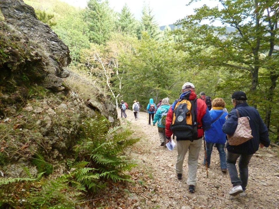 Nous démarrons notre randonnée dans la Forêt de lEspinouse au col de la Plane. Nous sommes 33 Cabris.