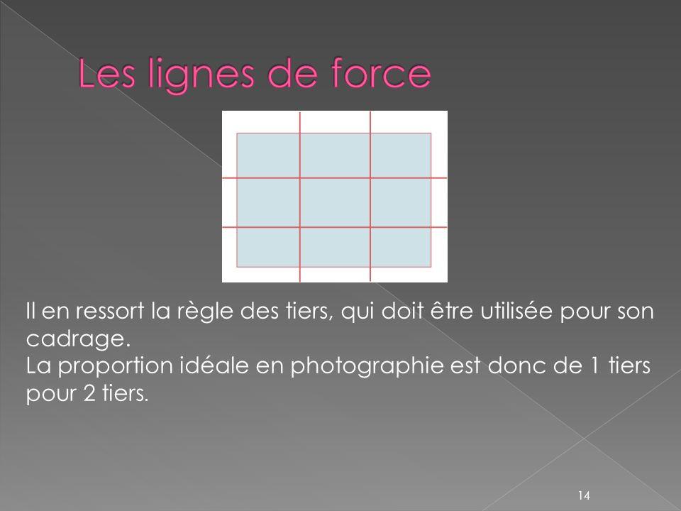 Il en ressort la règle des tiers, qui doit être utilisée pour son cadrage. La proportion idéale en photographie est donc de 1 tiers pour 2 tiers. 14