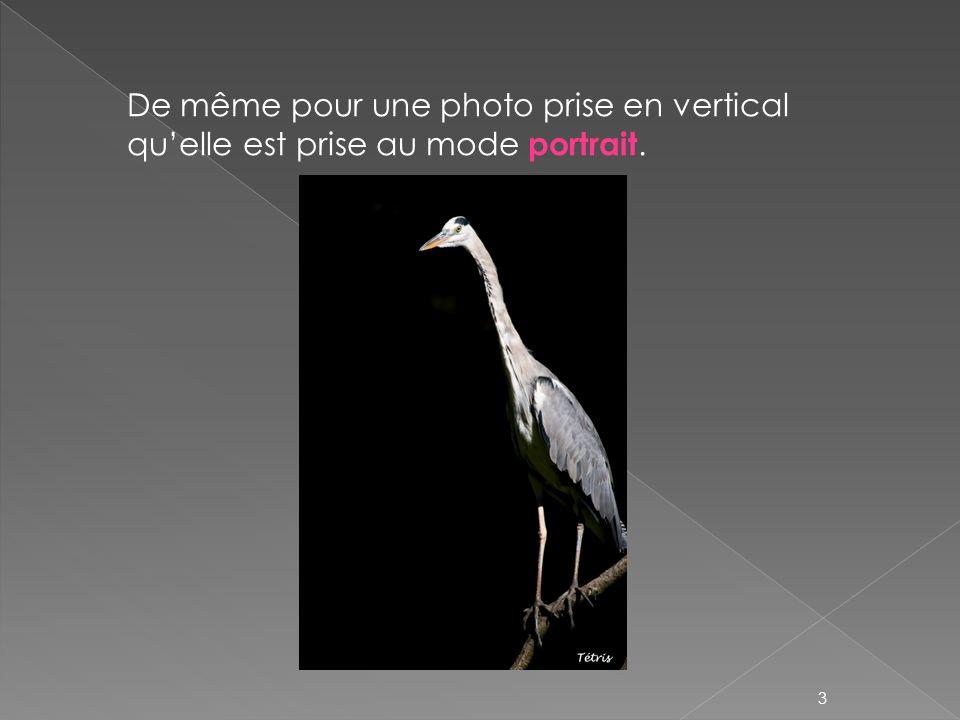 De même pour une photo prise en vertical quelle est prise au mode portrait. 3
