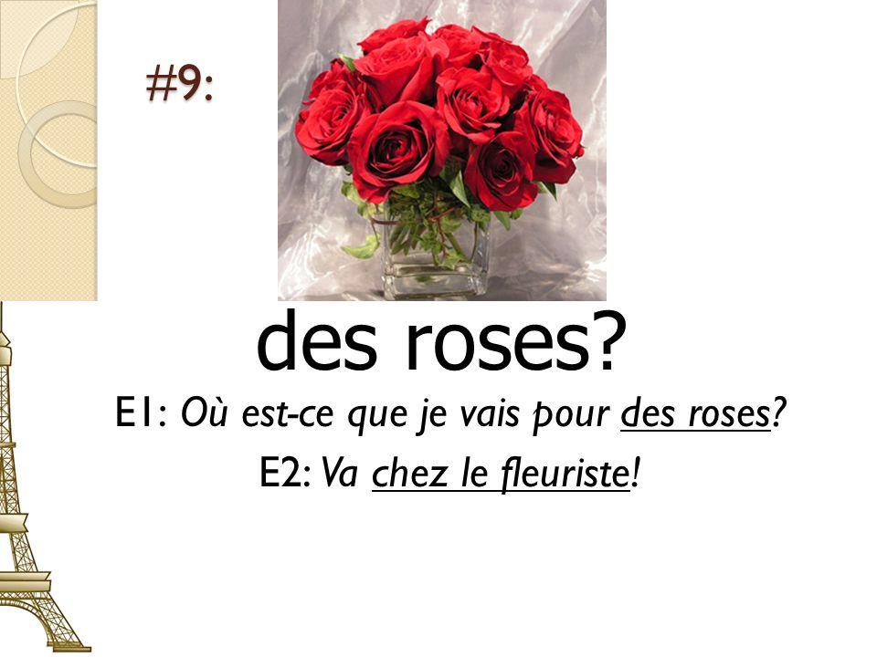 #9: des roses? E1: Où est-ce que je vais pour des roses? E2: Va chez le fleuriste!