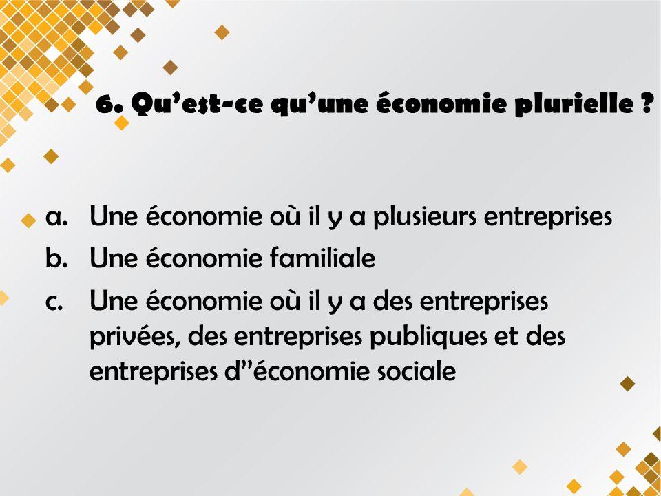 6.Quest-ce quune économie plurielle .
