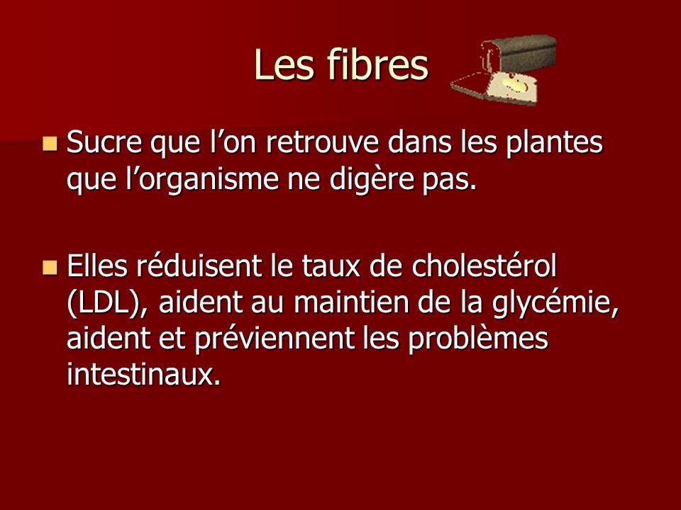 Les fibres Sucre que lon retrouve dans les plantes que lorganisme ne digère pas. Sucre que lon retrouve dans les plantes que lorganisme ne digère pas.