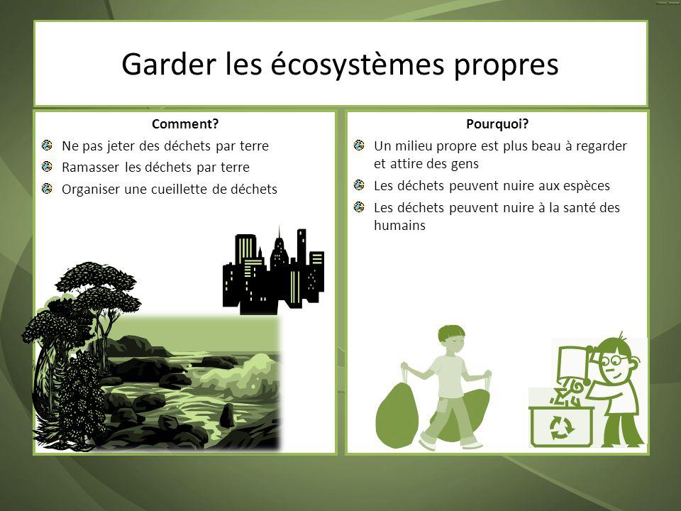 Comment? Ne pas jeter des déchets par terre Ramasser les déchets par terre Organiser une cueillette de déchets Pourquoi? Un milieu propre est plus bea