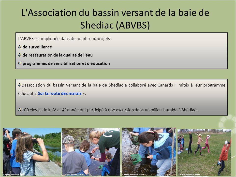 L'ABVBS est impliquée dans de nombreux projets : de surveillance de restauration de la qualité de l'eau programmes de sensibilisation et d'éducation L