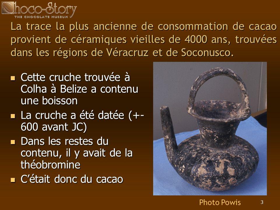 3 La trace la plus ancienne de consommation de cacao provient de céramiques vieilles de 4000 ans, trouvées dans les régions de Véracruz et de Soconusc