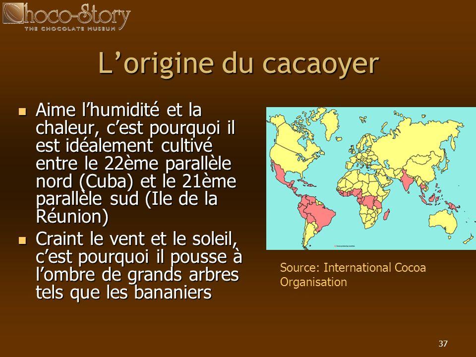 37 Lorigine du cacaoyer Aime lhumidité et la chaleur, cest pourquoi il est idéalement cultivé entre le 22ème parallèle nord (Cuba) et le 21ème parallè