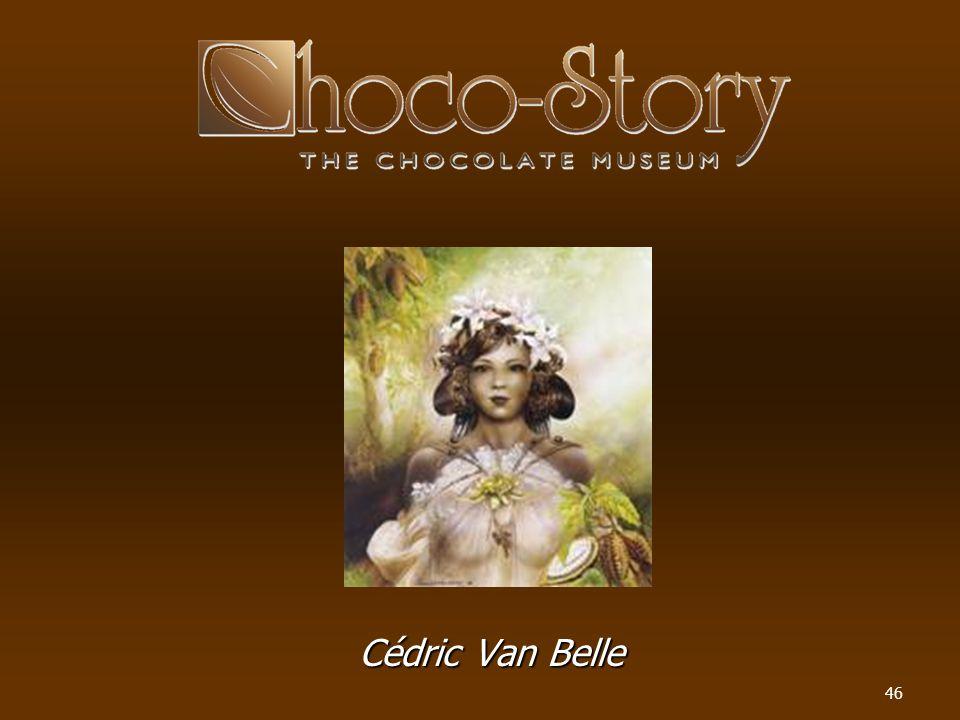 46 Cédric Van Belle