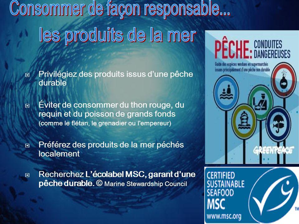 Privilégiez des produits issus dune pêche durable Éviter de consommer du thon rouge, du requin et du poisson de grands fonds (comme le flétan, le gren