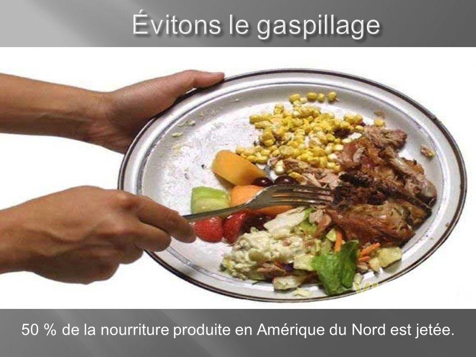 50 % de la nourriture produite en Amérique du Nord est jetée.