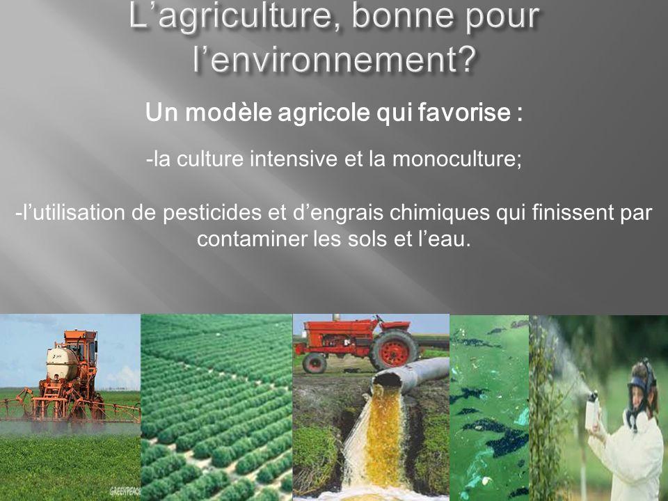 Un modèle agricole qui favorise : -la culture intensive et la monoculture; -lutilisation de pesticides et dengrais chimiques qui finissent par contami
