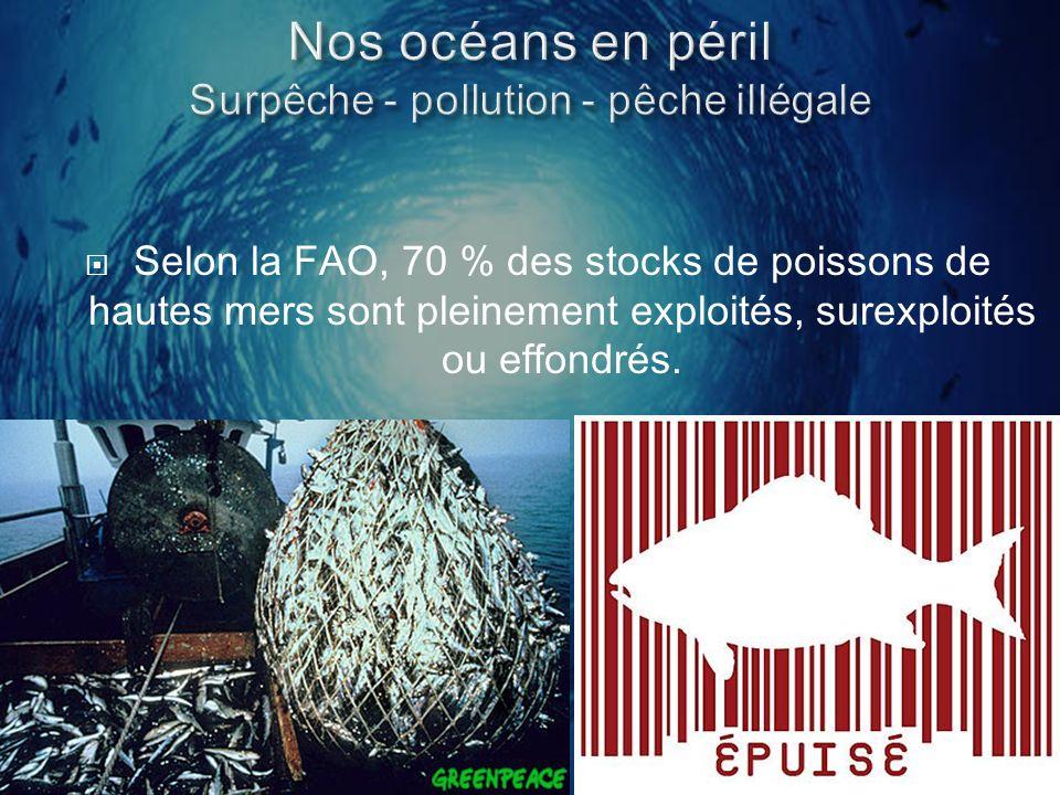 Selon la FAO, 70 % des stocks de poissons de hautes mers sont pleinement exploités, surexploités ou effondrés.