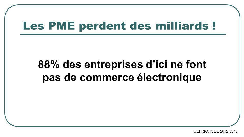 88% des entreprises dici ne font pas de commerce électronique Les PME perdent des milliards .