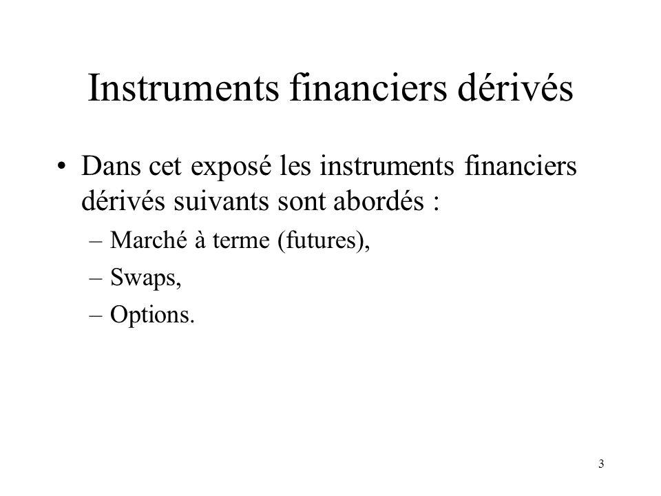 3 Instruments financiers dérivés Dans cet exposé les instruments financiers dérivés suivants sont abordés : –Marché à terme (futures), –Swaps, –Option