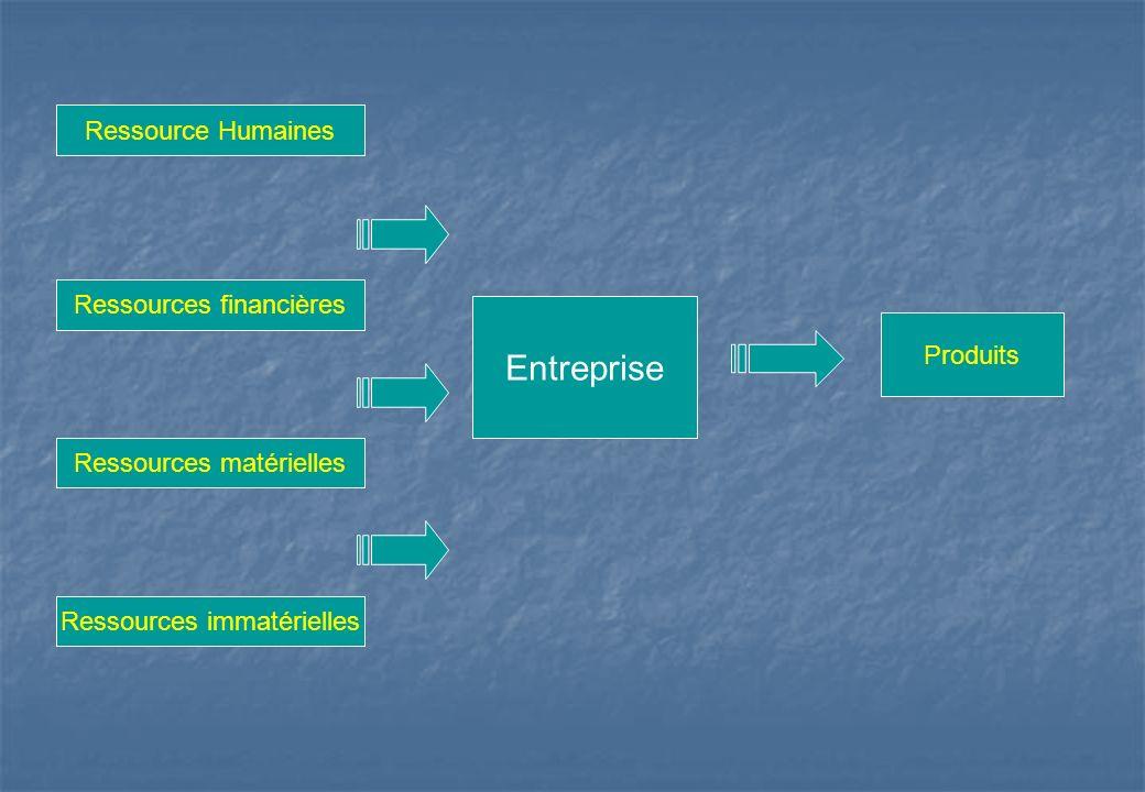 Entreprise Ressource Humaines Ressources financières Ressources matérielles Ressources immatérielles Produits