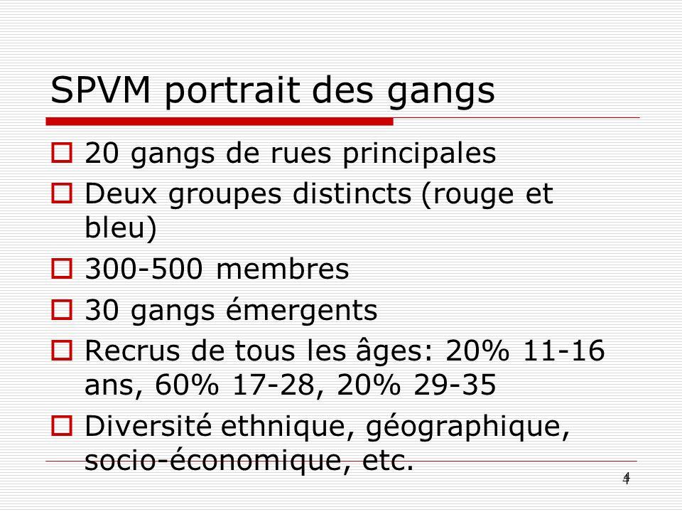 4 4 SPVM portrait des gangs 20 gangs de rues principales Deux groupes distincts (rouge et bleu) 300-500 membres 30 gangs émergents Recrus de tous les