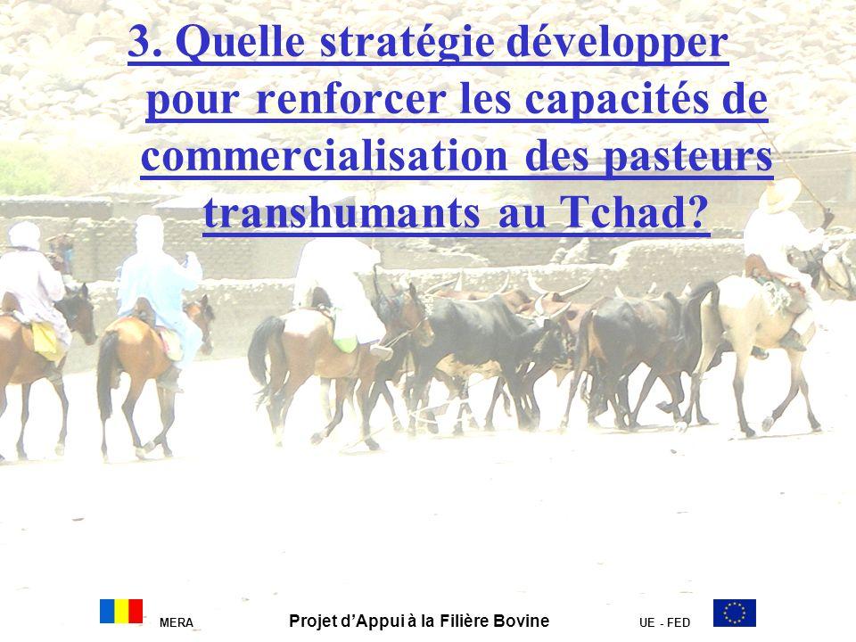 3. Quelle stratégie développer pour renforcer les capacités de commercialisation des pasteurs transhumants au Tchad? MERA Projet dAppui à la Filière B