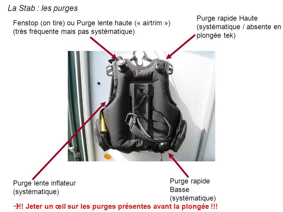 La Stab : les purges Fenstop (on tire) ou Purge lente haute (« airtrim ») (très fréquente mais pas systématique) Purge rapide Haute (systématique / ab