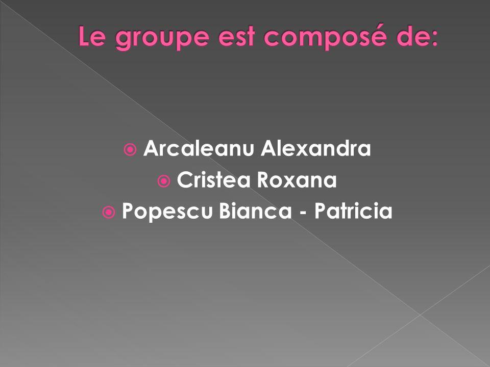 Arcaleanu Alexandra Cristea Roxana Popescu Bianca - Patricia