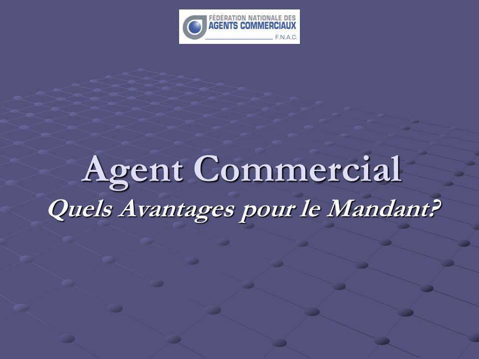 Agent Commercial Quels Avantages pour le Mandant?