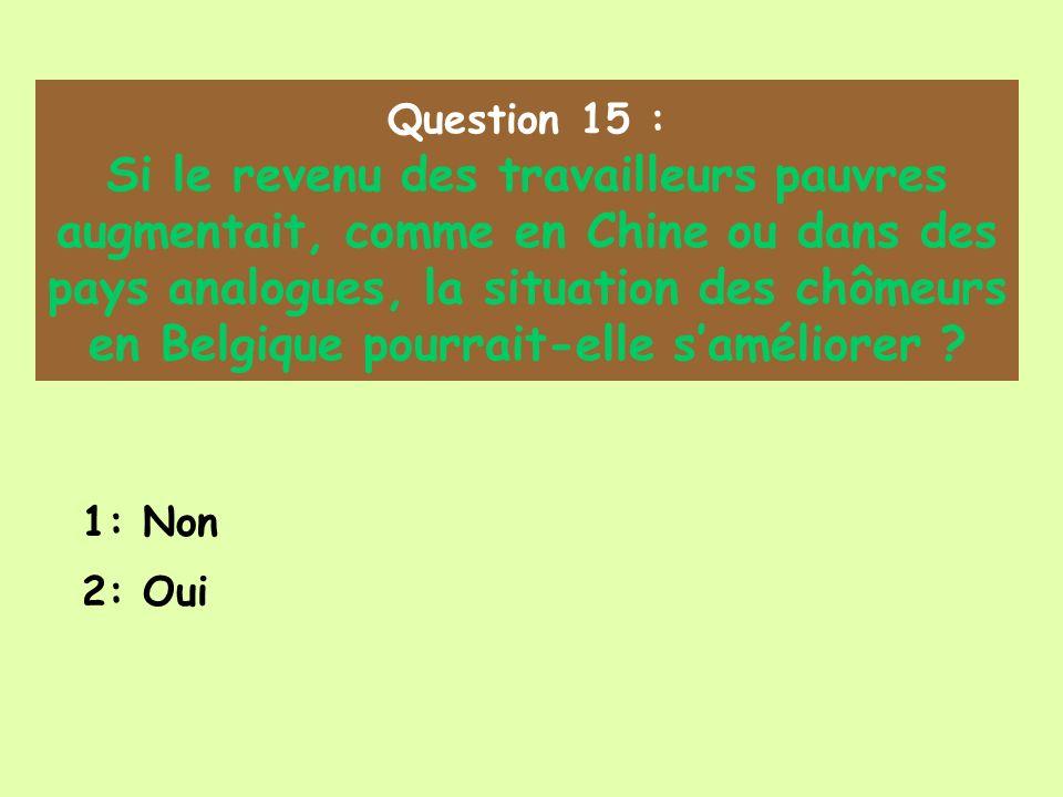 Question 15 : Si le revenu des travailleurs pauvres augmentait, comme en Chine ou dans des pays analogues, la situation des chômeurs en Belgique pourrait-elle saméliorer .