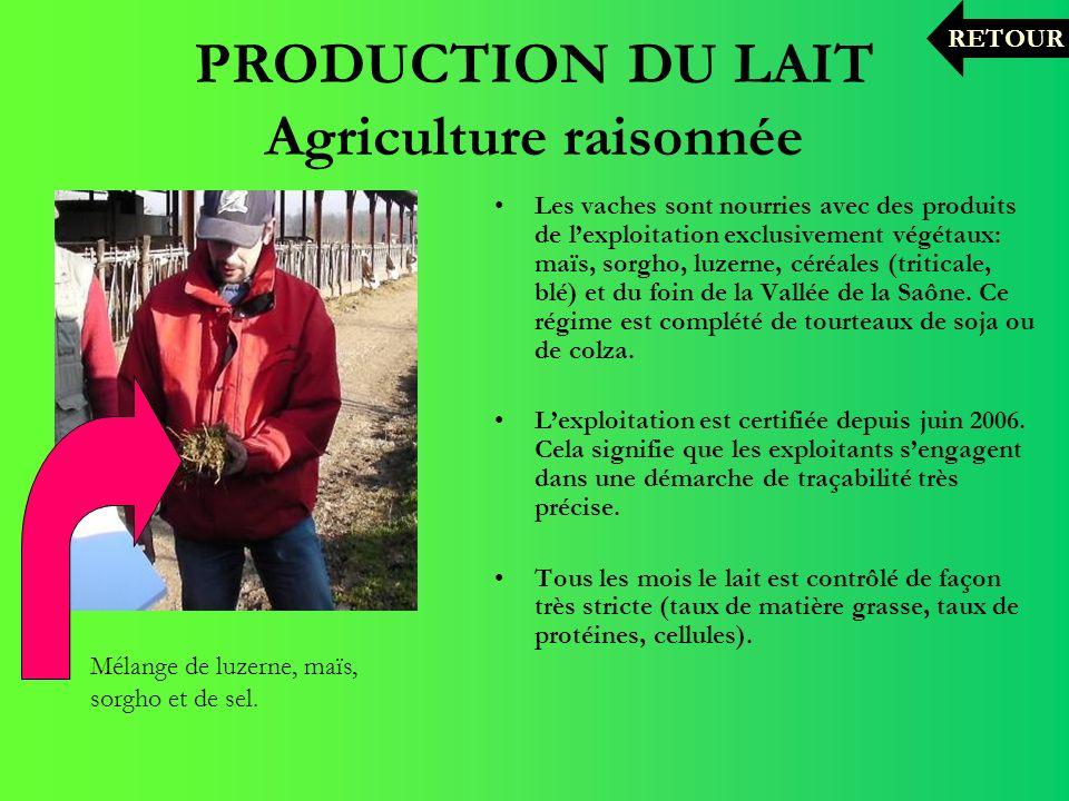 PRODUCTION DU LAIT Agriculture raisonnée Les vaches sont nourries avec des produits de lexploitation exclusivement végétaux: maïs, sorgho, luzerne, cé