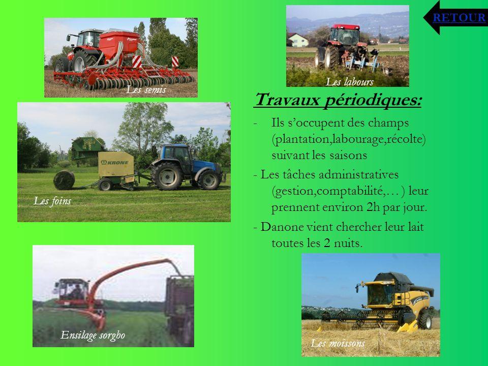Travaux périodiques: -Ils soccupent des champs (plantation,labourage,récolte) suivant les saisons - Les tâches administratives (gestion,comptabilité,…