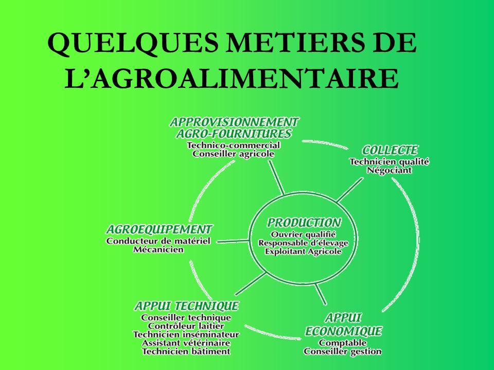 QUELQUES METIERS DE LAGROALIMENTAIRE