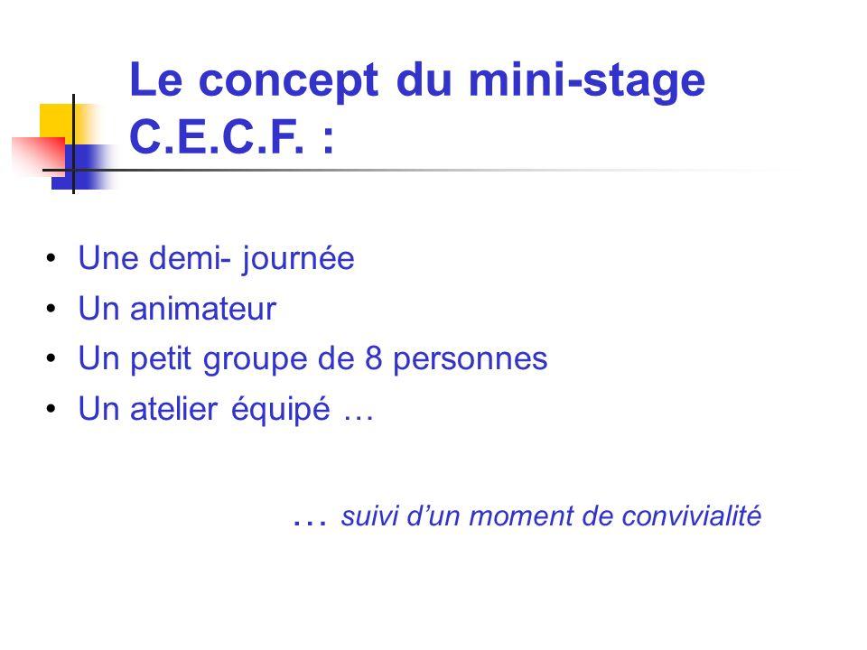 Exemples de Stages C.E.C.F.