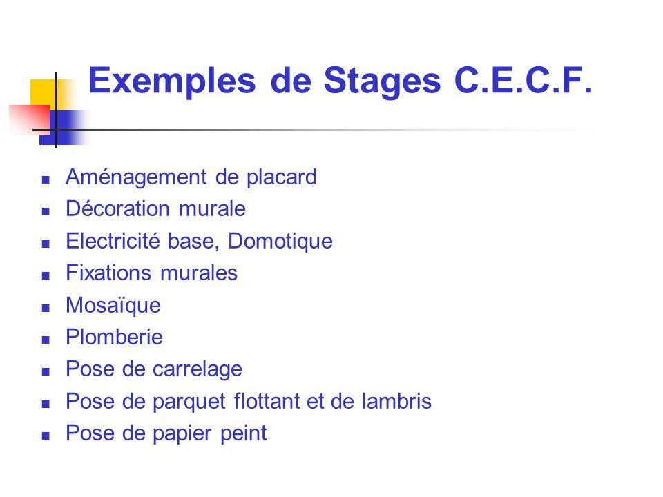 Support Pédagogique Plomberie C.E.C.F. Par exemple voici un :