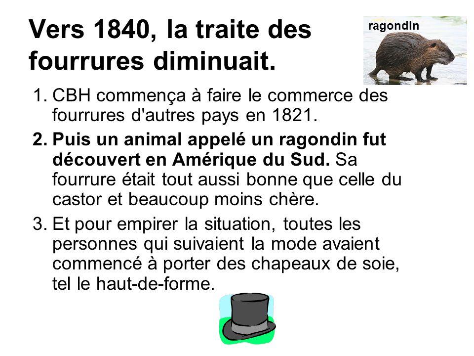 Vers 1840, la traite des fourrures diminuait. 1.CBH commença à faire le commerce des fourrures d'autres pays en 1821. 2.Puis un animal appelé un ragon